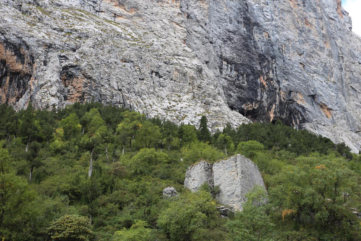 被树木环绕的那两方石头很像是人为建造的,但事实上它们就是两块大石头