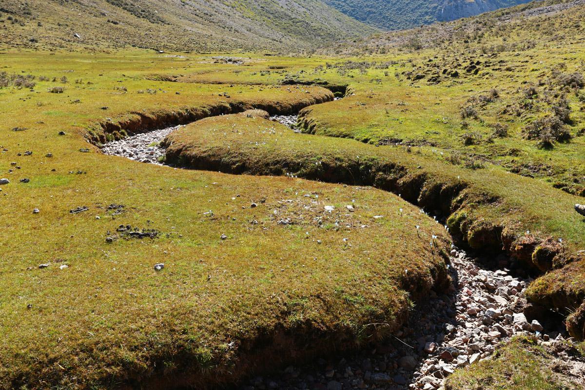 凡是河流蜿蜒的地方地势都很平,现在是旱季,河床已经干涸,只有微风作伴。