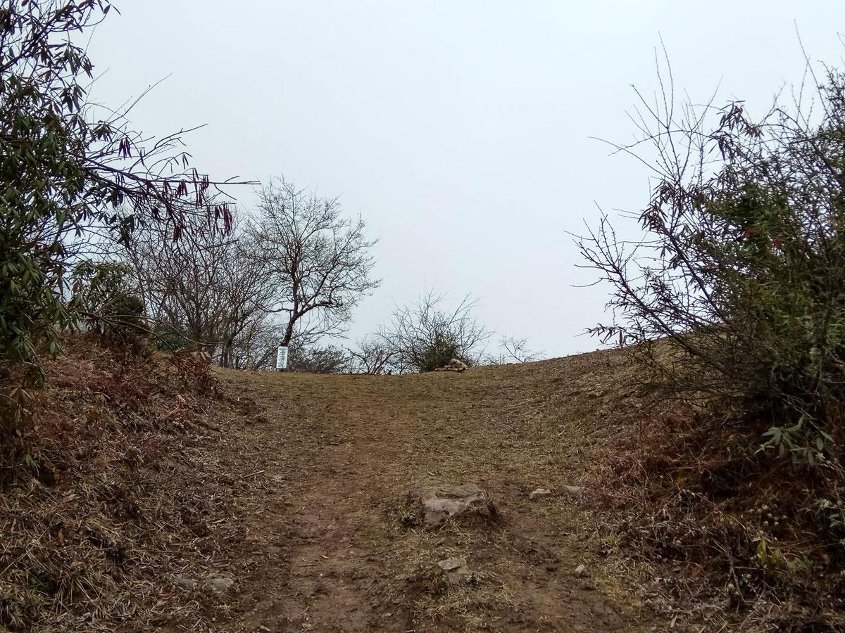 远处是一处三岔口,有一指路牌。